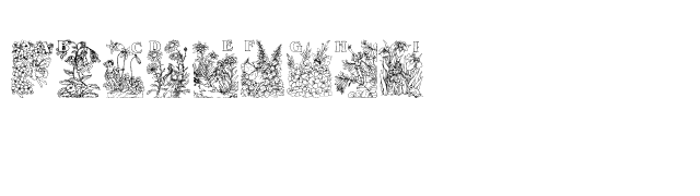 Flower and Fairy Alphabet Font